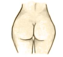 Pear a shape
